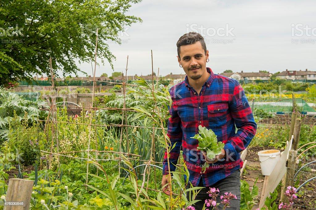 Gardener at his allotment. royalty-free stock photo