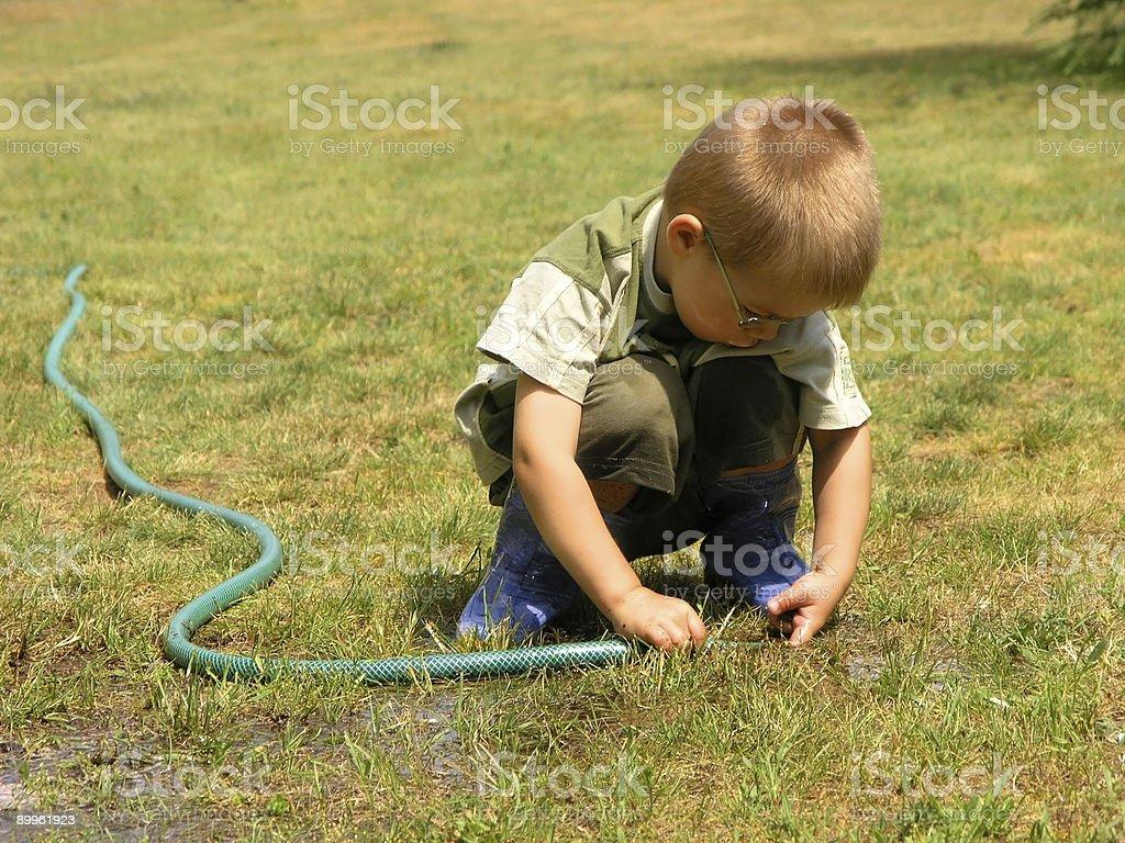 Gardener Boy 2 royalty-free stock photo