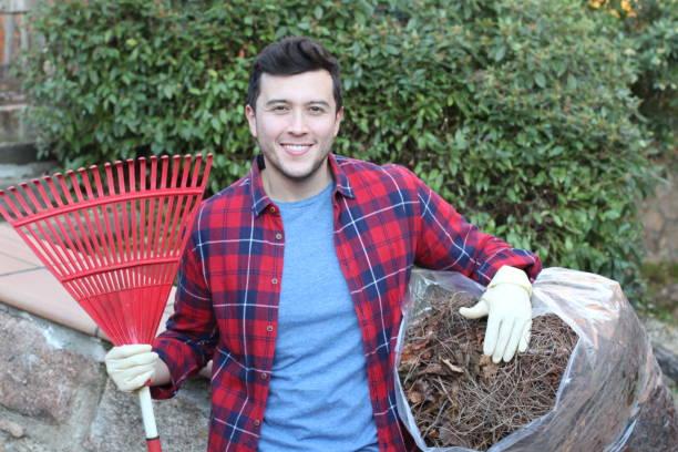 Limpeza do jardineiro com um ancinho manual - foto de acervo