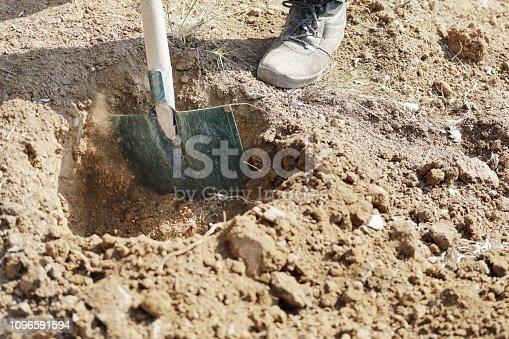 Gardener digging in a garden with a shovel