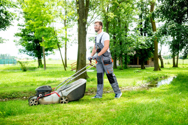 Gardener equipped with lawnmower on the job stock photo