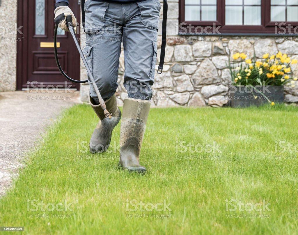 Horticultor de jardinero rociando asesino de mala hierba en césped - mantenimiento de jardines - foto de stock