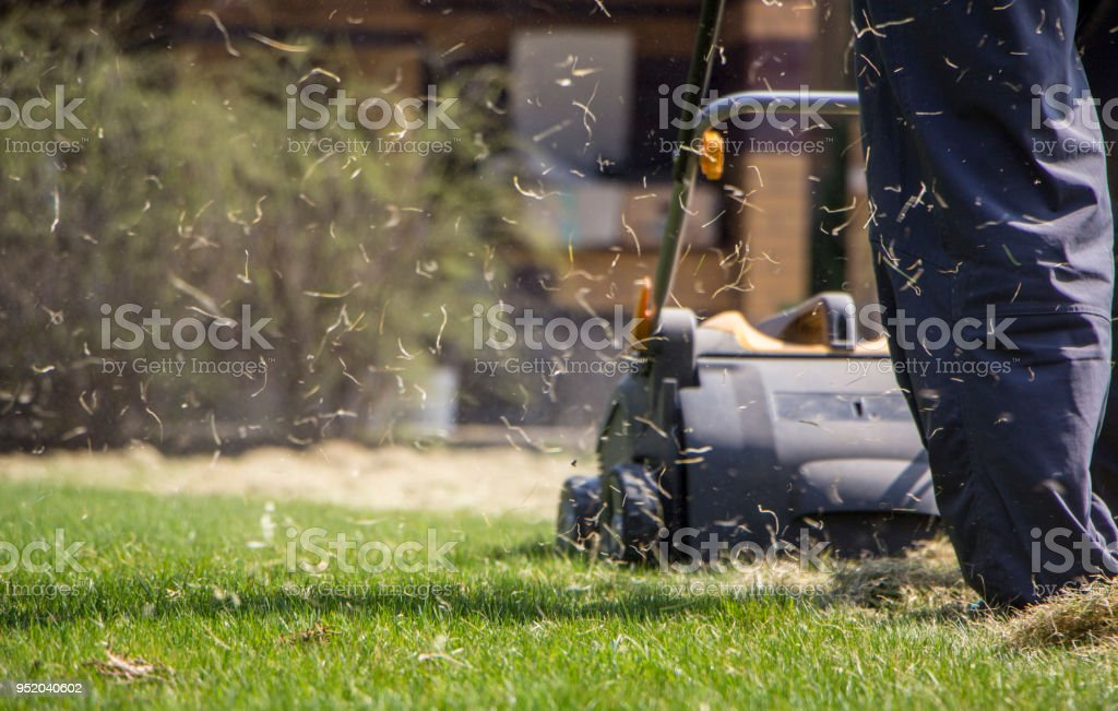 Gardener Operating Soil Aeration Machine on Grass Lawn stock photo