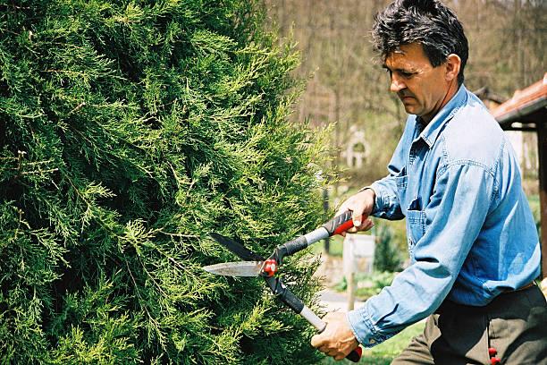 gardener - waldhandwerk stock-fotos und bilder