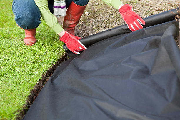 Gardener protecting laying weed with barrier fabric stock photo