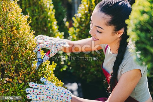 Smiling mixed race woman cutting longer branches to make perfect shape. Pruning concept at the garden center.