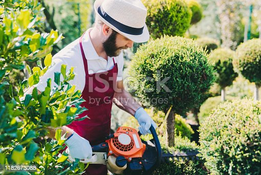 Man working in garden center cutting longer branches. Pruning concept at the garden center