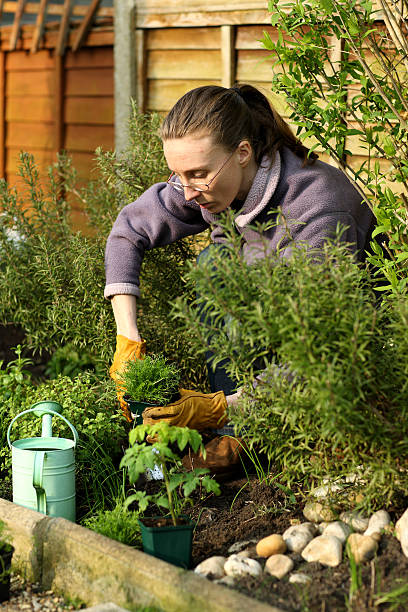 Gardener surrounded by plants stock photo