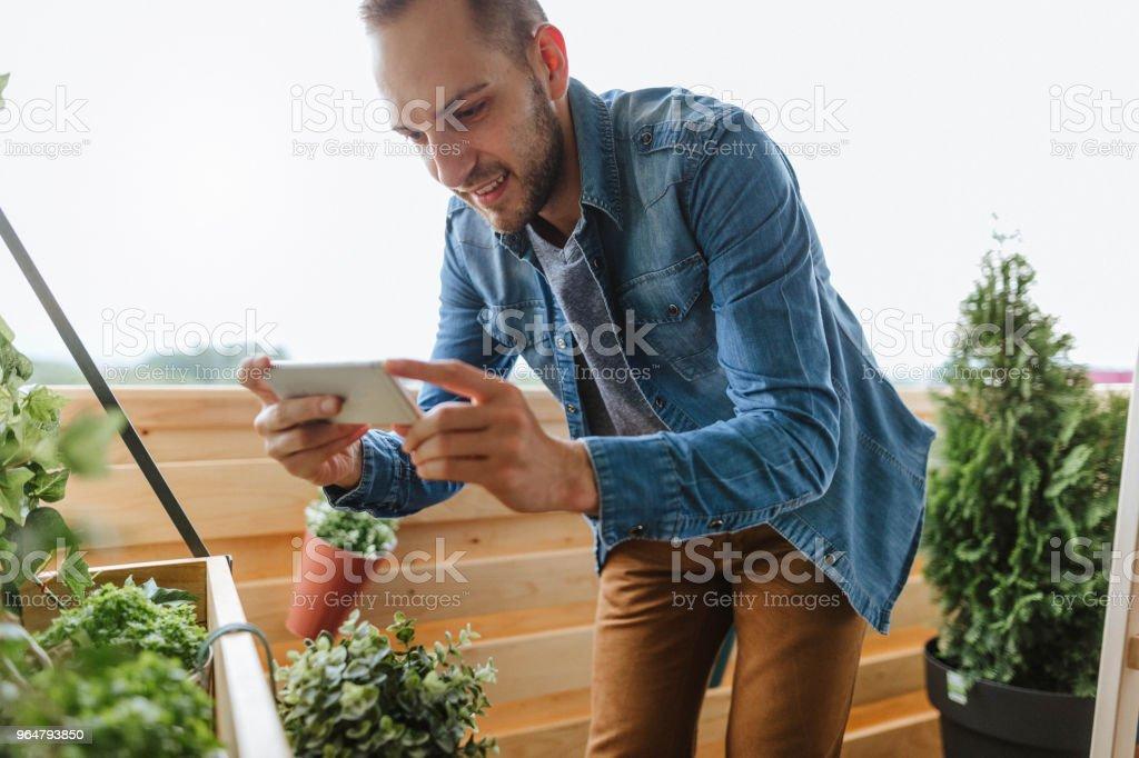 Gardener takes photo in his garden royalty-free stock photo