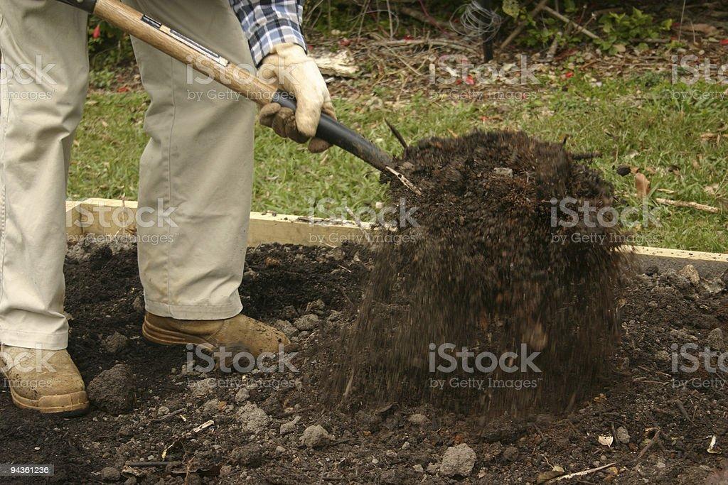 Gardener Tossing Soil with Garden Fork stock photo