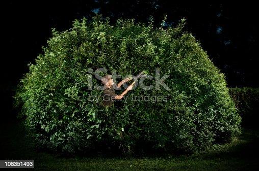 Dedicated gardener pruning big bush at night.