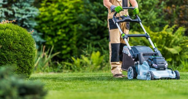 Gardener Trimming Grass Lawn Using Electric Cordless Mower stock photo