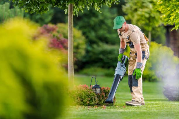 Gardener with Cordless Leaf Blower Cleaning Backyard Garden stock photo