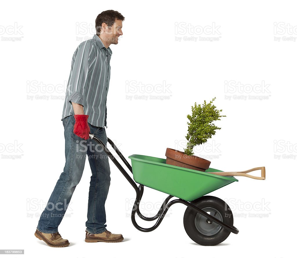 Gardener with Wheelbarrow on White Background stock photo