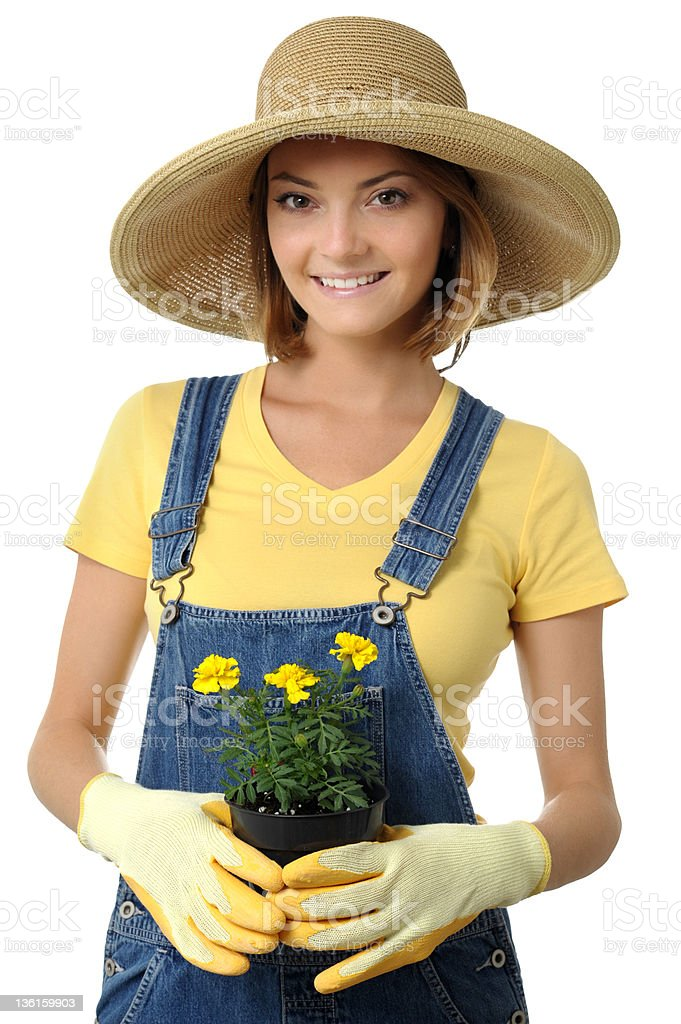 Gardener Woman with Seedling Flower Pots Isolated on White Background royalty-free stock photo