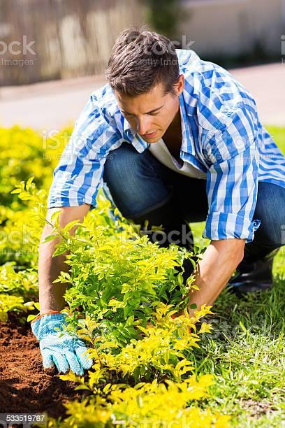 Gardener working in garden picture id533519767?b=1&k=6&m=533519767&s=612x612&h=5s3eetaq2q5vu2o0p silzskmrqhs6ilt9rfxommw7a=
