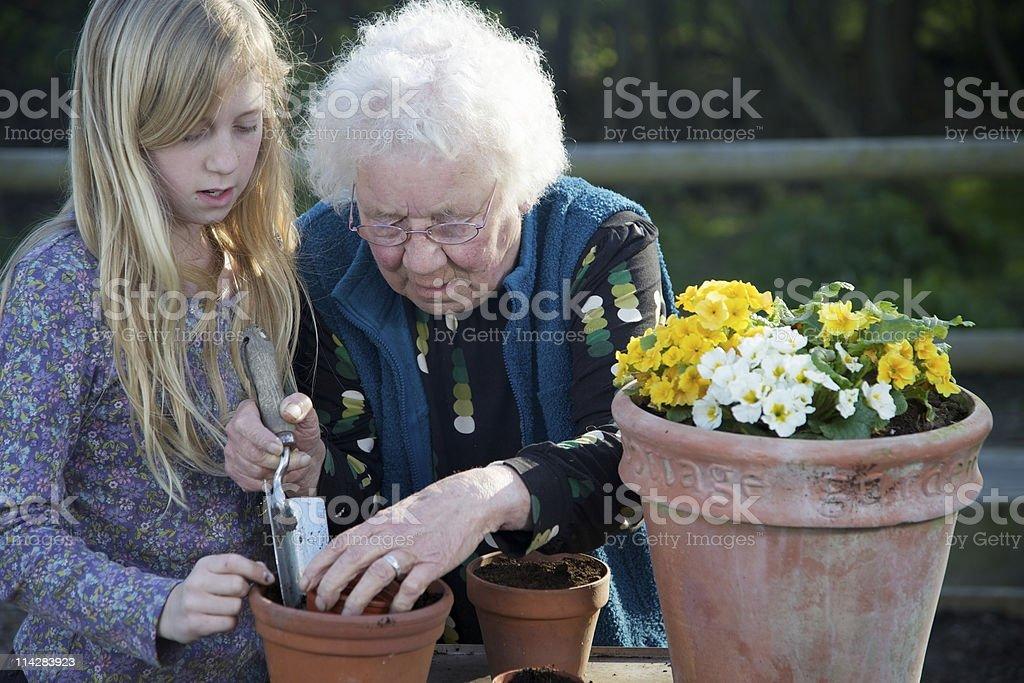 Gardeners... royalty-free stock photo