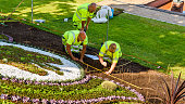 Ronneby, Sweden - June 16, 2018: Professional gardeners planting flowers in a public park, Tingshusparken, in celebration of the 100th anniversary of The Swedish Working Dog Association.