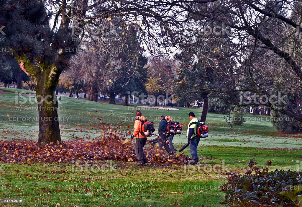 Gardeners Using Leaf Blowers to Groom the Golf Course stock photo