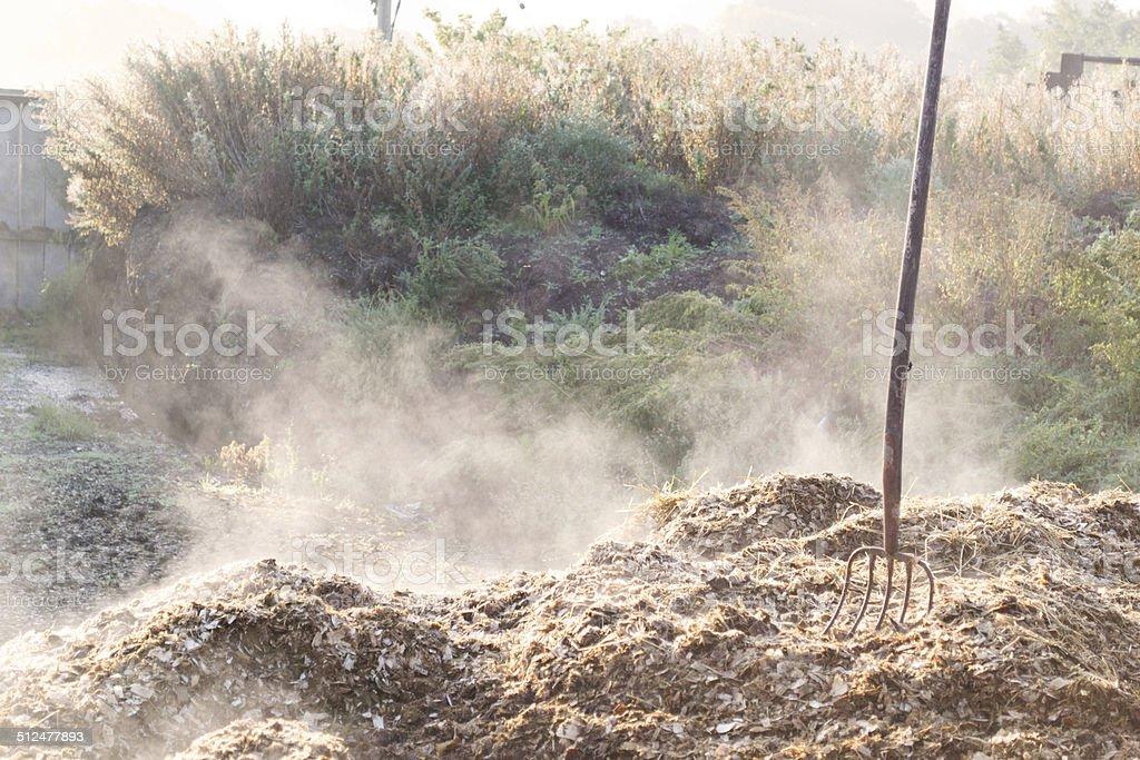 Gardenfork in manure stock photo