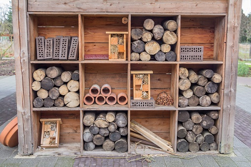 Gardenhouse constrruction with beehotels and tree truncks