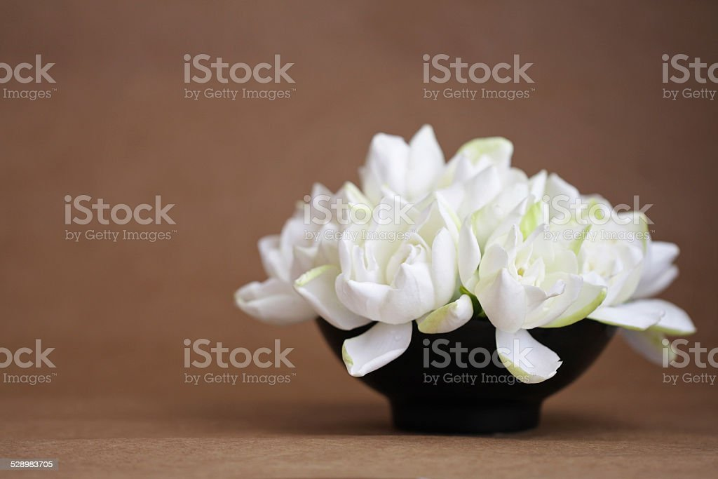 A DSLR still life photo of a bouquet of fresh white gardenia flowers...