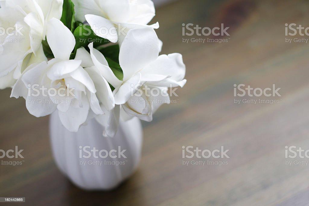 Gardenia flowers royalty-free stock photo