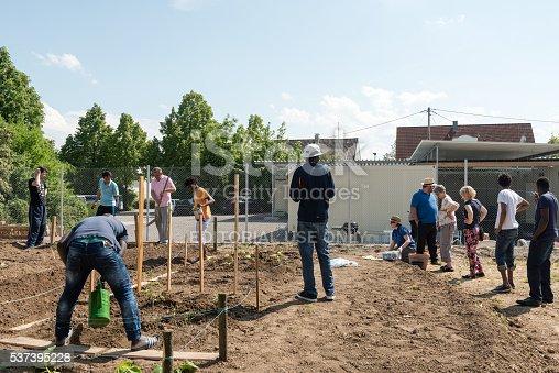 istock Gardening activities in a German refugee camp 537395228