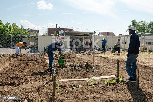 istock Gardening activities in a German refugee camp 537395652