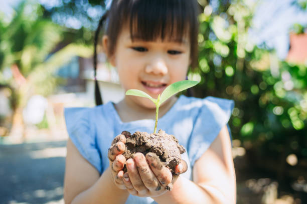 gardening activity of kid planting a tree for help to prevent global warming. - earth day stock pictures, royalty-free photos & images