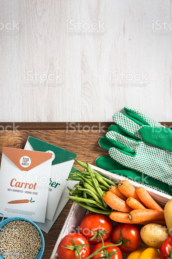Gardening and farming stock photo