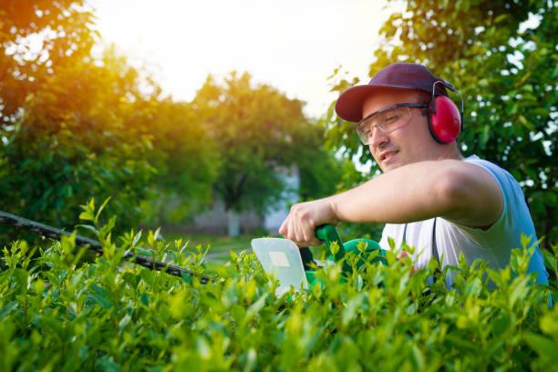 garten- und landschaftsbau büsche. - gartenarbeit stock-fotos und bilder