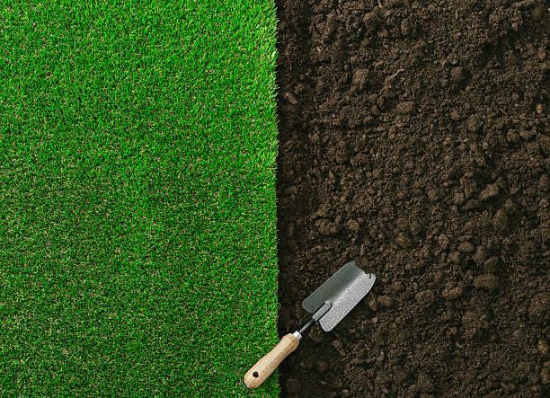 Jardinería y paisajes - foto de stock