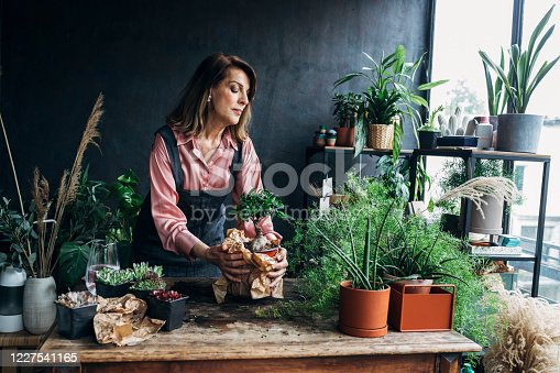 Mature woman in an apron tending to house plants at home.