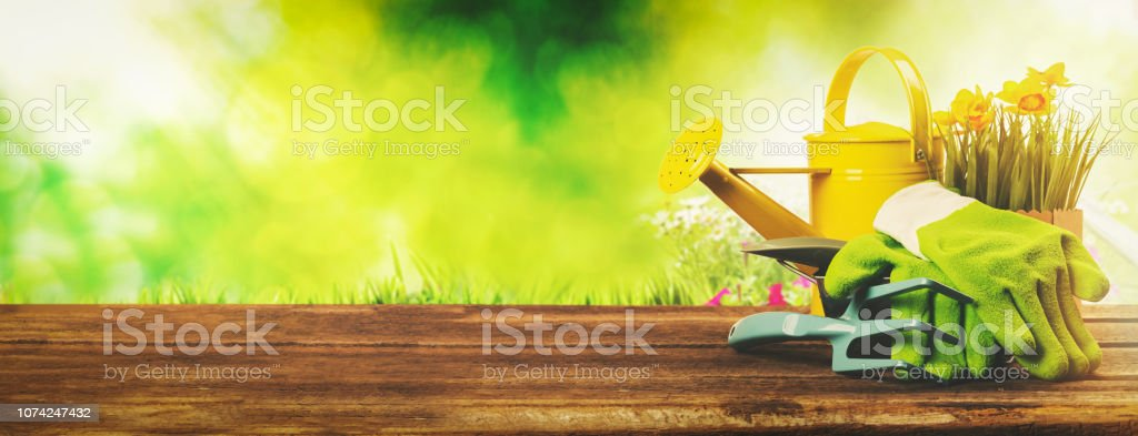 gardening banner - gardener tools on green garden background stock photo