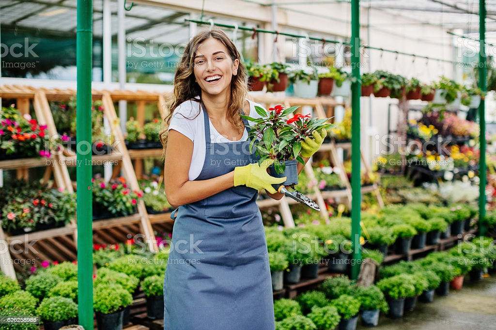 Gardening business stock photo