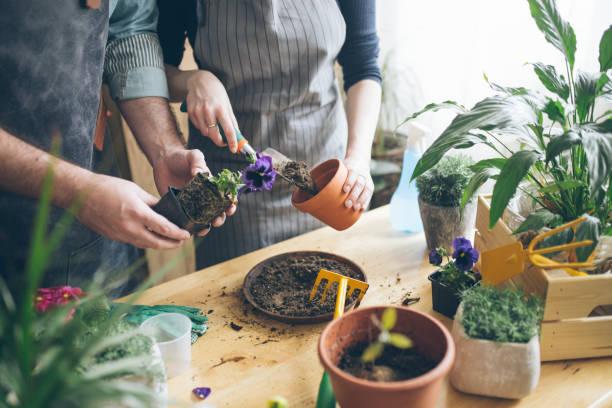 Gardening class stock photo