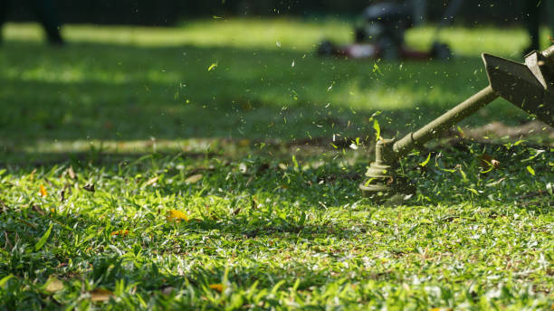 Gardening concept The workers are cutting the grass in the park mowing stock pictures, royalty-free photos & images