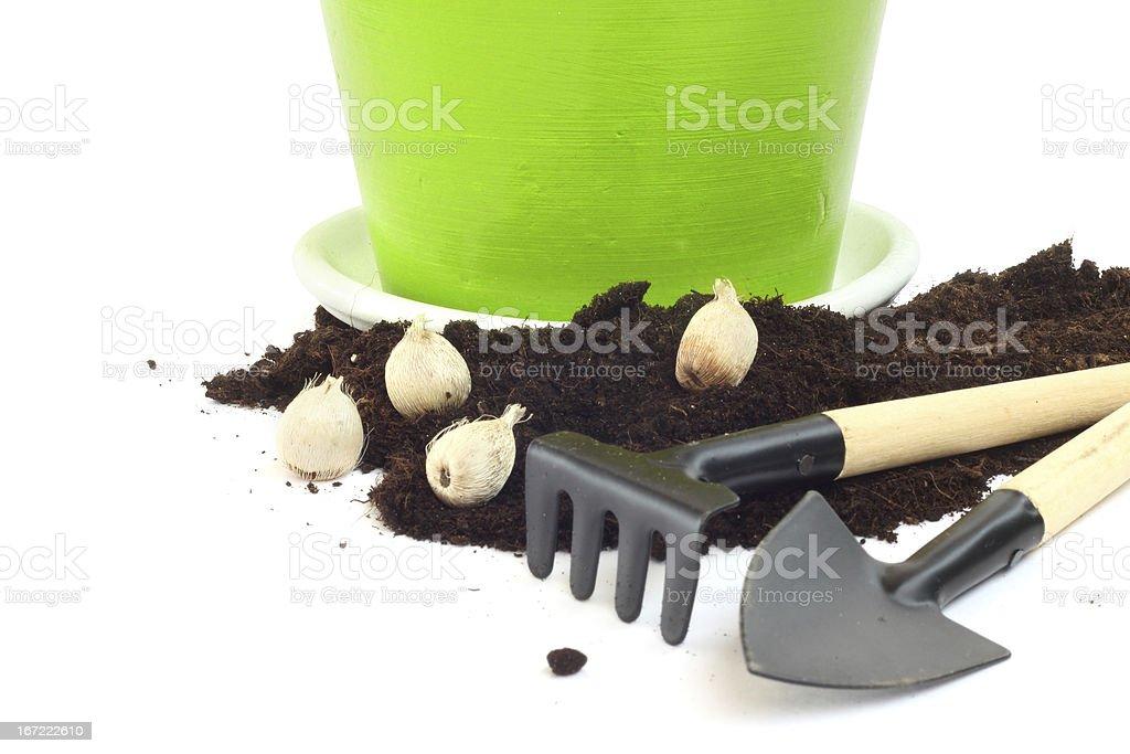 Gardening concept royalty-free stock photo