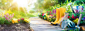 istock Gardening - Equipment Flowerbed In Sunny Garden 642945796