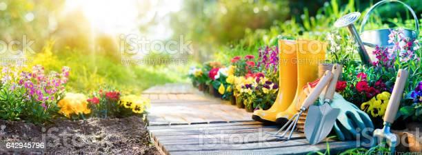 Gardening equipment flowerbed in sunny garden picture id642945796?b=1&k=6&m=642945796&s=612x612&h=ksajowiqcq0qsk7bafchlisgb1qjiatyflrfdhlxwf0=