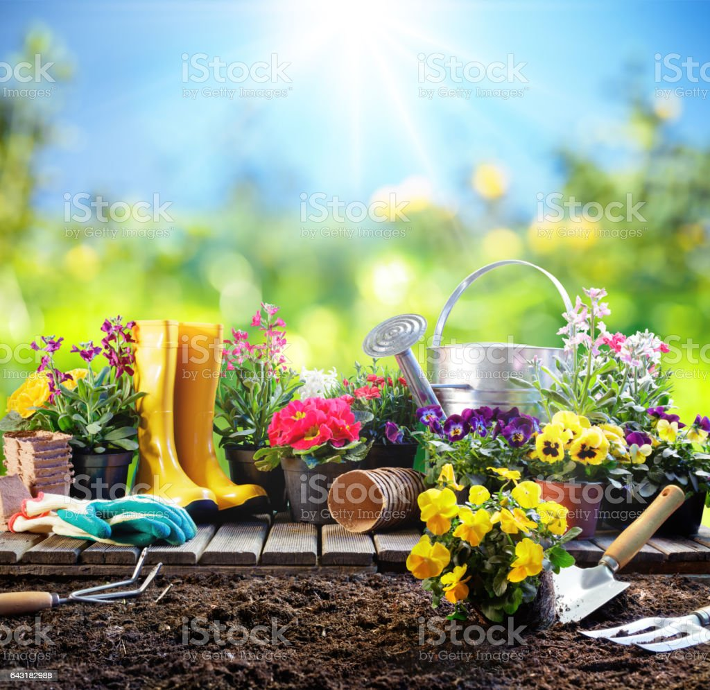 Gartenarbeit - Ausrüstung für Gärtner mit Blumentöpfen – Foto
