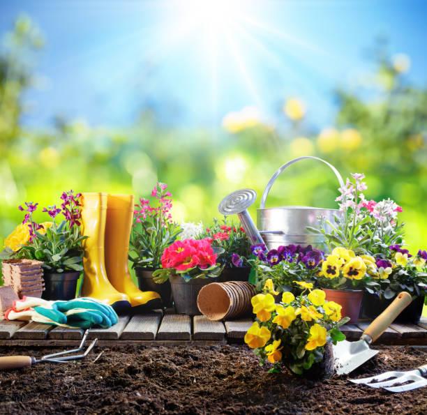 jardinage - équipement pour jardinier avec pots de fleurs - jardiner photos et images de collection
