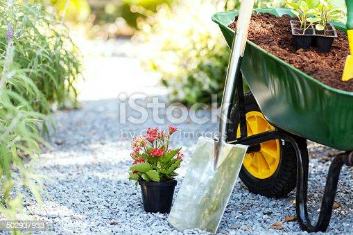 Wheelbarrow with shovel and flower pot in garden. Horizontal shot.