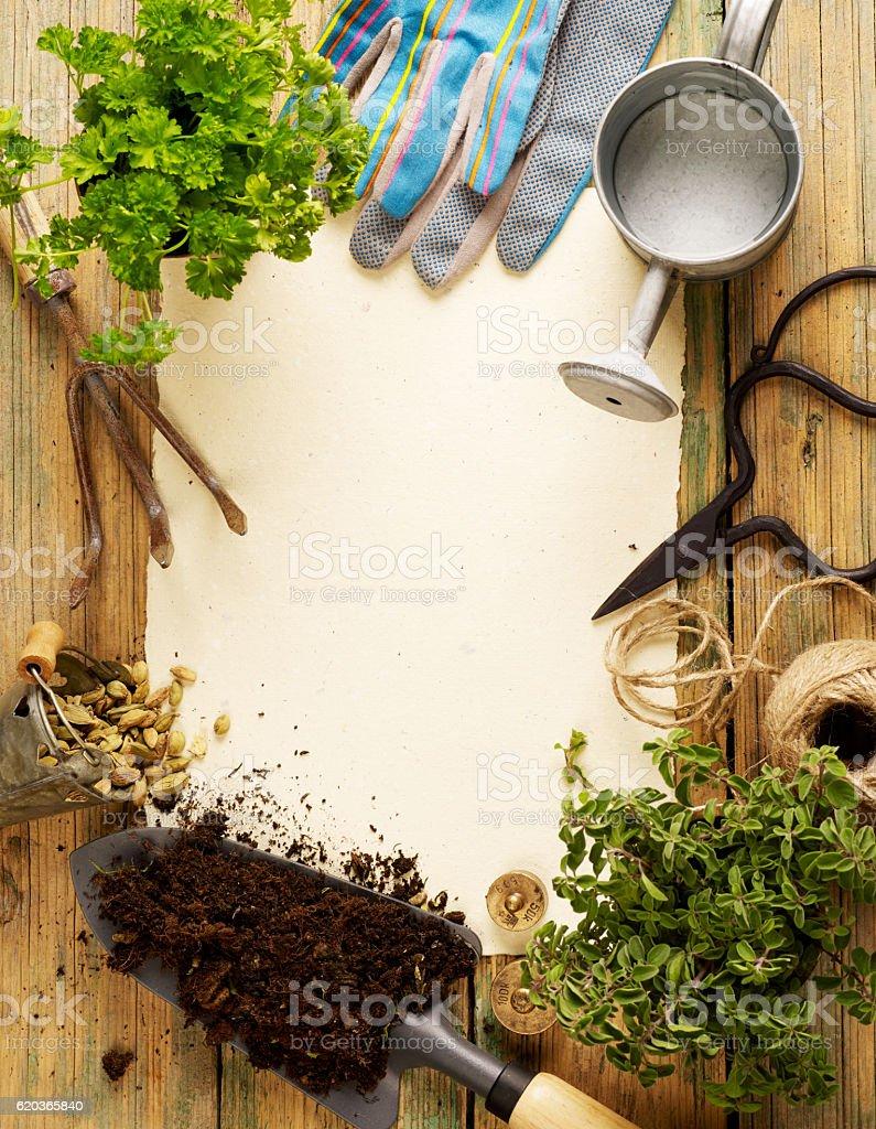 Sprzęt ogrodniczy zbiór zdjęć royalty-free