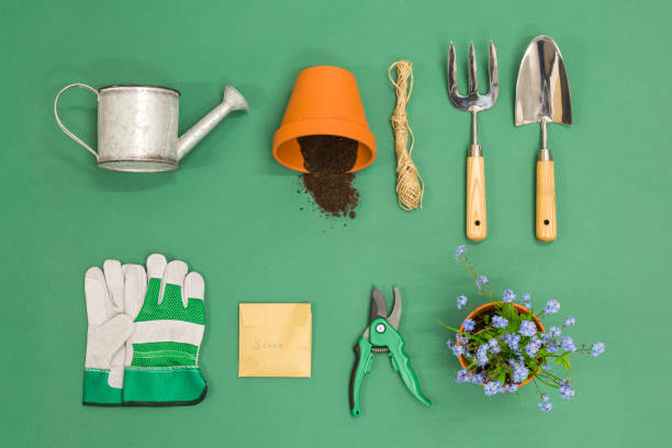 Gardening flat lay stock photo