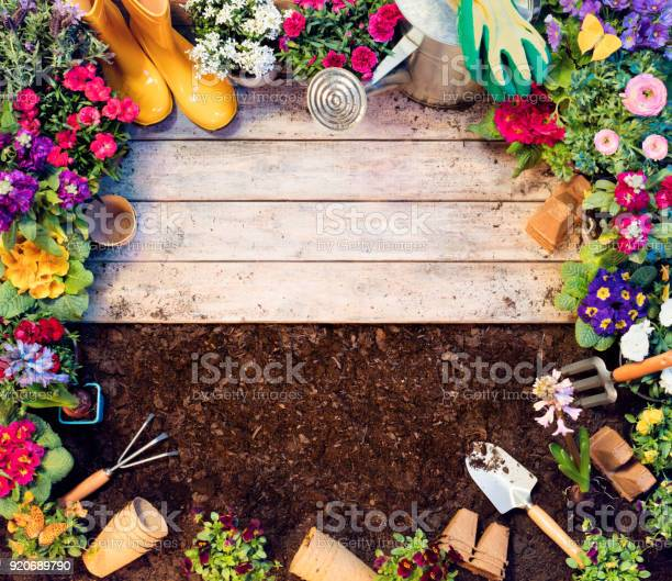 Gardening frame tools and flowerpots on wooden table and dirt picture id920689790?b=1&k=6&m=920689790&s=612x612&h=eldo1r9xffgblrpfjeivxdfr9eh6a0ubtrxeqx ijx8=