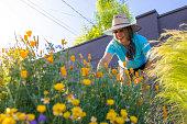 istock Gardening Fun 1312412347