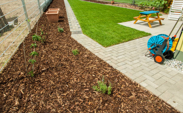 Gardening - Garden with fresh new lawn and bark mulch area to reduce weed growth stock photo