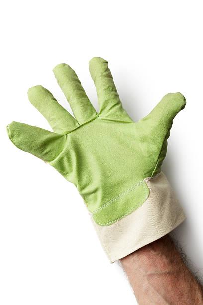 gardening: gardening glove with hand isolated on white background - 원예 장갑 뉴스 사진 이미지